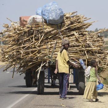 overloaded-just a bit...ethiopia: pictures by albi with nikon camera