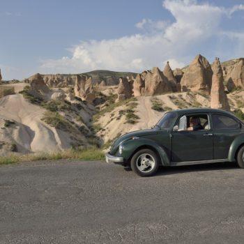 der käfer; das auto...