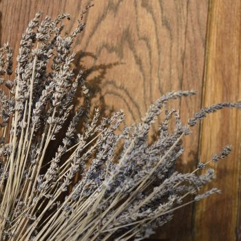 my wife has a green hand - dry lavender from aix-en-provence