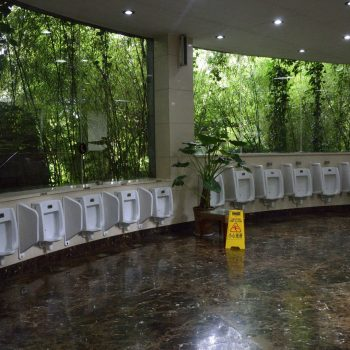 will everything be big like this? toilets with a green view
