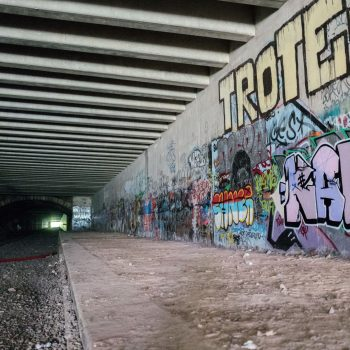 petite ceinture paris - by albi: a place to take pictures