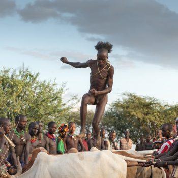 bull jump