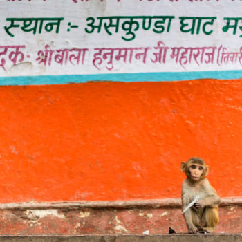 pictures from mathura, agra and varanasi
