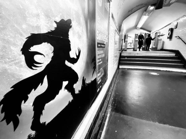 safari à paris - by albi