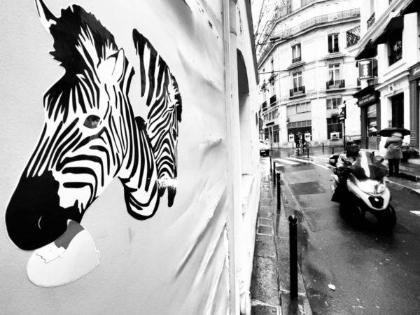 safari à paris - part II - by albi